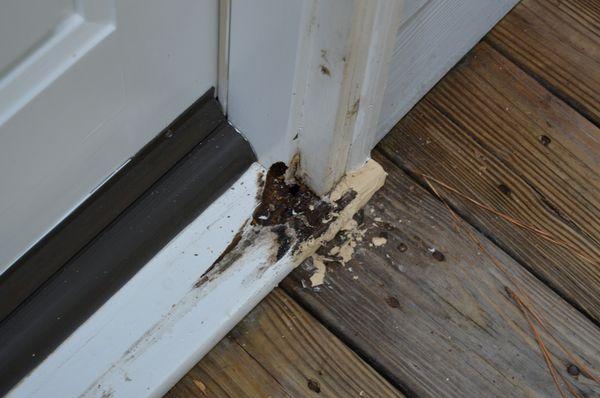 Door Sill And Molding Repair Fv Handyman