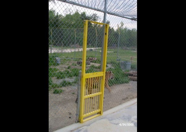 Drop door in tiger shift cage - 2003