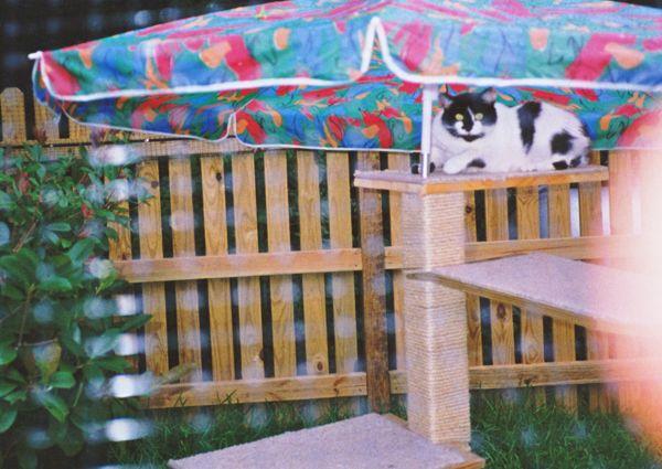 Outdoor climbing post for Zoe - 1992
